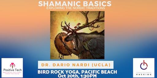 Shamanic Basics - Dr. Dario Nardi - (Consciousness Hacking)