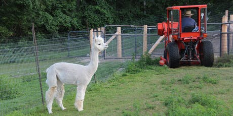 Setting Up Your Alpaca Farm tickets