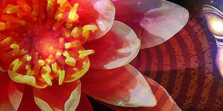 Red Lotus Life: Meditation, Sound Bath & Intention Clearing tickets