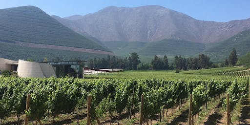 Humboldt Beginnings: The Wines of Chile
