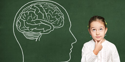 The CEO of the Brain:How Executive Functioning Skills Help Children Succeed