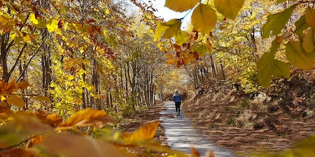 ActiveHike Πηλιο: Autumn Mythical Forests tickets