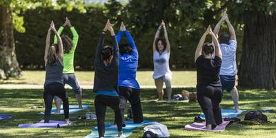 Wellness @ Work   Yoga Class