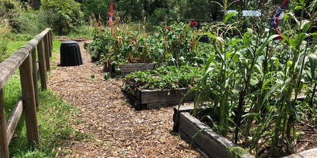 Planning your summer vegetable garden - October 2019 tickets