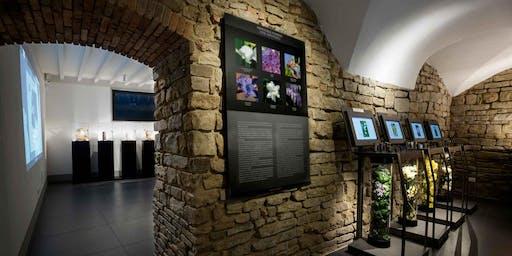 Il Museo del Profumo