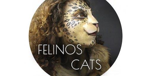 Make-up Workshop: Cats/Felinos