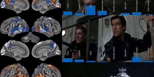 The cinematic brain: Mapping the human emotion circuits with motion pictures