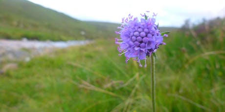 Sense of Place - Wester Ross - Garve tickets