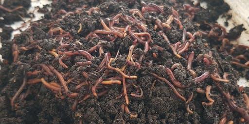 Composting Worm Farm Workshop - Starter kit included