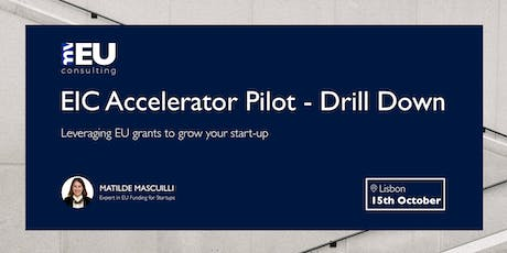 EIC Accelerator Pilot - Drill Down tickets