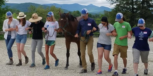 Equine Facilitated Learning Demonstration