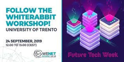 Follow the WhiteRabbit! From Future Emerging Technology to innovation