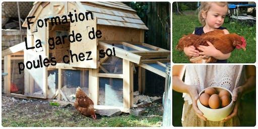 Formation - La garde de poules chez soi