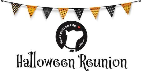 NLOL Halloween Reunion tickets