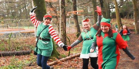Elf Family Fun Run 2019 tickets