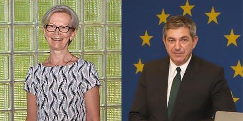 Ambassador Insider Series - Finland / European Union
