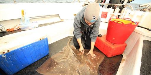 Shark tagging training