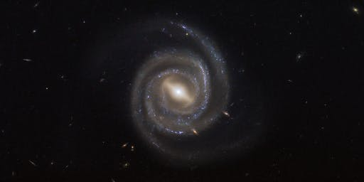 Supermassive blackholes and galaxy evolution