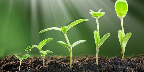 Climate Week Event: The Power of Plants & the Secrets of the Soil tickets
