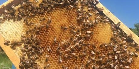 Pollinator Tour tickets