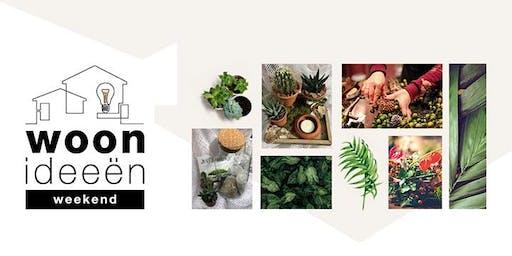 Workshop groendecoratie Heerlen