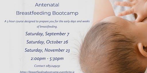 Athlone Breastfeeding Bootcamp