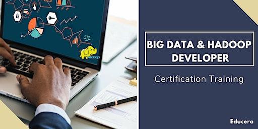 Big Data and Hadoop Developer Certification Training in  Saint Boniface, MB