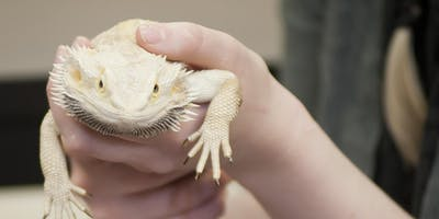 Zoo Keeping Technology Info Session at Pikes Peak Community College