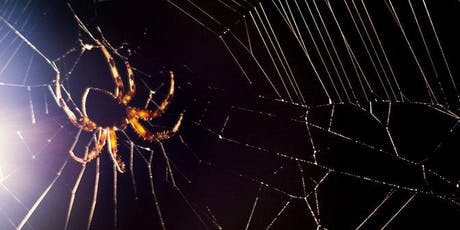 Fort Tryon Kids: Awesome Arachnids with APEC tickets