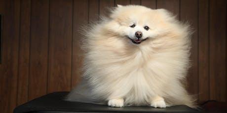 Dog Beauty Bar with Jess Rona tickets