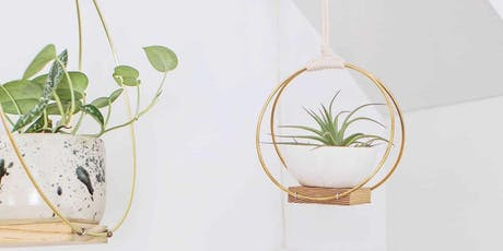 Craft & Sip at Time Out Market - Modern air plant hanger  tickets