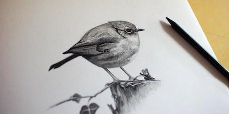 Graphite drawing skills - free workshop tickets
