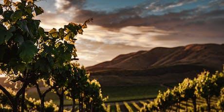 Balkan Wine Tasting: Indigenous Reds tickets