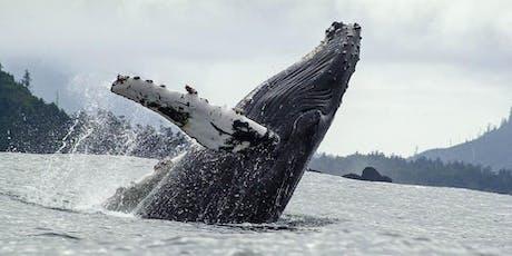 27th Annual B.C. Marine Mammal Symposium tickets