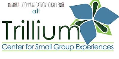 Mindful Communication Challenge