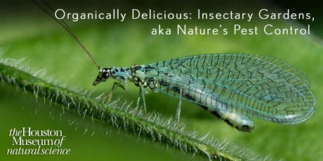 Organically Delicious: Insect Gardens aka Nature's Pest Control tickets
