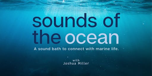Ojai, CA - Sounds of the Ocean