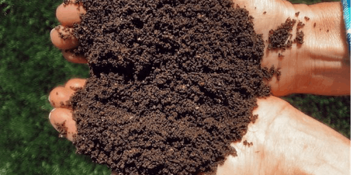 Worm Castings: What, Why, and Wow!