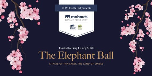 The Elephant Ball