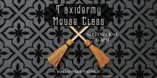 Special Halloween Themed Taxidermy Mouse Class