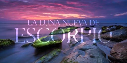 LUNAESCSA19   Luna Nueva Escorpio   28 Octubre   San Ángel 20:00