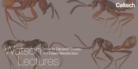 How to Deceive Society: An Insect Masterclass tickets