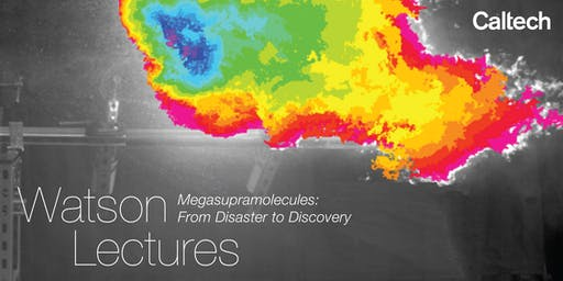 Megasupramolecules: From Disaster to Discovery