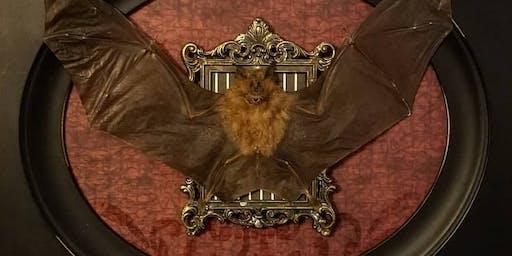 Build-A-Bat Workshop w/ CarLy Haney