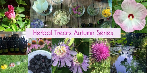 Series: Herbal Treats for Winter Gifts and Self-Care