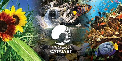 Project Catalyst Forum 2020