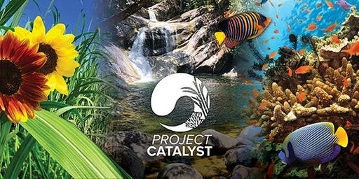 Project Catalyst Forum 2020