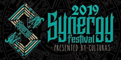 Synergy Music & Arts Festival