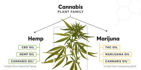 Cannabis Education Center tickets