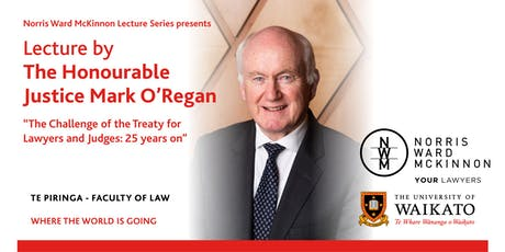 The Challenge of the Treaty for Lawyers and Judges : 25 years on tickets